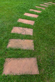 Walkway on the green grass — Stockfoto