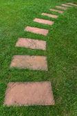 Дорожка на зеленой траве — Стоковое фото
