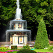 "Stock Photo: Fountain"" Roman"" in Pertergof"
