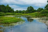Landscape. River, trees, sky. — Stock Photo