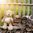 Teddy bear on the bench — Stock Photo