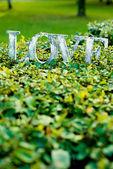 Word love on the lawn — Foto de Stock