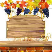 Wood banner with grapes — Stock Vector
