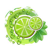 Slice of lime — Stock Vector