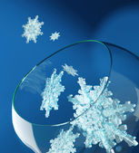 December snowflakes in glass vase — Stock Photo