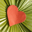 Red heart on leaf — Stockfoto