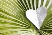 Heart shape over leaf — Stock Photo