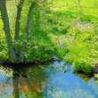 Stock Photo: A photo of small river in early spring landscape