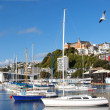A photo of Wellington harbor and boats - 