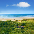 Stock Photo: Photo of Danish coastline - Jutland