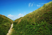 A photo of Danish coastline - Jutland — Stock Photo