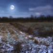 A photo of the moon and Early winter landscape at night in the countryside — Stock Photo #19733799