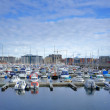 A harbor photo from Norwegian city Bodo, north of the polar circle — Stock Photo