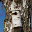 Stock Photo: A photo of bird house - feeding place