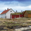 A photo An old historic house in Norway — Stock Photo #19770931