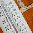 A photo an outdoor thermometer on brick wall — Stock Photo #19772661