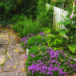 A photo of Garden flowerbed in sunlight — Stock Photo