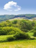 пейзаж фото из дании — Стоковое фото