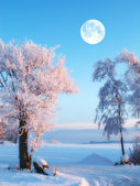 A photo of the moon and winter landscape — Stock Photo