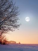 Ay ve kış manzara fotoğrafı — Stok fotoğraf