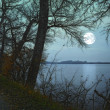 A photo of Moonshine in landscape — Stock Photo #19780655