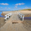 A photo a Road on the beach - Jutland, Denmark - Stock Photo