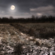 A photo of the moon and Early winter landscape at night in the countryside — Stock Photo #19783031