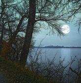 Photo de clair de lune dans paysage — Photo