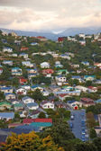 A photo of urban area of Wellington, New Zealand — Stock Photo