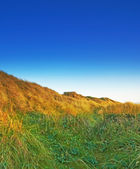 A photo of Danish coastline - Jutland — Stock Photo