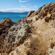 A photo of a Rocky Coast near Wellington, New Zealand - Stock Photo