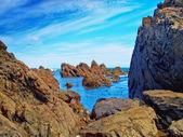 A photo of a Rocky Coast near Wellington, New Zealand — Stock Photo
