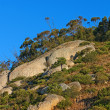 South African wilderness - blue sky and mountains — Stock Photo