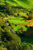 Manzara fotoğrafı kimden yeni zelanda — Stok fotoğraf