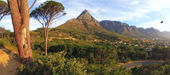 A photo of Table Mountain, Cape Town, South Africa — Stock Photo