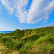 Stock Photo: Photo of beach of Jutland, Denmark