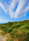 A photo of the beach of Jutland, Denmark — Stock Photo