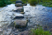 A photo of a Small river with stones — Stock Photo