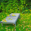 A photo of a lounger in autumn — Stock Photo