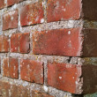 An extremely detailed photo of a brick wall - very sharp — Stock Photo