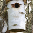 A photo of a bird house - Stock Photo