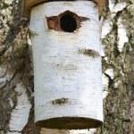 A photo of a bird house — Stock Photo #19862585