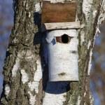 A photo of a bird house — Stock Photo #19862641