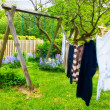 A photo of laundry hanging outdoor - Stock Photo