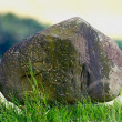 A photo of stone on a field — Stock Photo