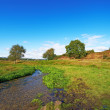 A landscape photo of a small river - Rebild, Denmark — Stock Photo
