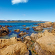A photo of a rocky coast — Stock Photo