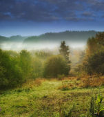 Landscape photo of mist an early morning — Stock Photo