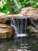 A photo of a small waterfall — Stock Photo