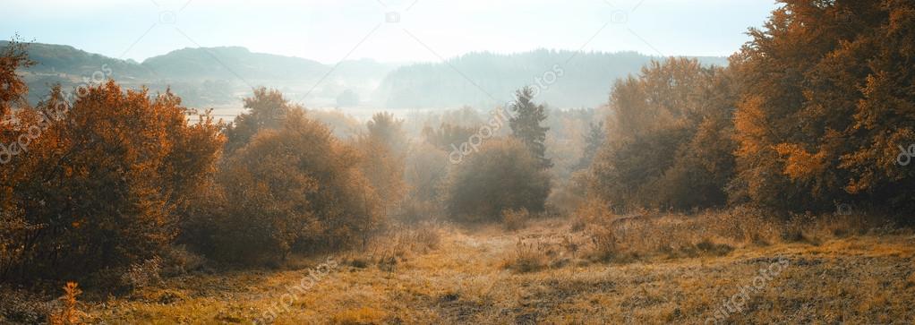 Фотообои Пейзаж фото туман раннего утра.